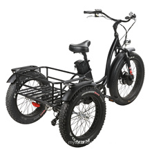 Fat Tire Electric Tricycle for Man/Woman with High Power 48V750W