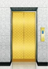 엘리베이터 티타늄 에칭 SS 문 방문