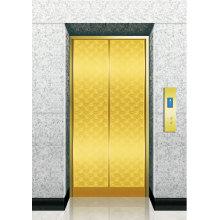 Elevator Titanium Etched SS Landing Door