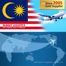 Transport aérien bon marché de la Chine vers la Malaisie / Kuala Lumpur