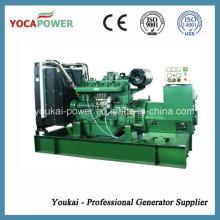 Generador de la energía eléctrica de 220kw / 275kVA fijado por el motor de Fawde (CA6DF2-30D)