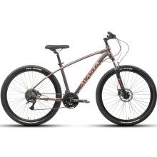 Avasta Suspension Fork MTB 11 Speed Mountain Bicycle