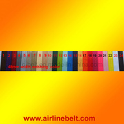 Safety Webbing, Car Safety Webbing, Airplane Safety Webbing (EDB-13011903)