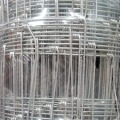 Galvanized Field Fence Wire Fencing