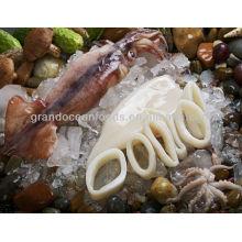 Frozen squid tube U5