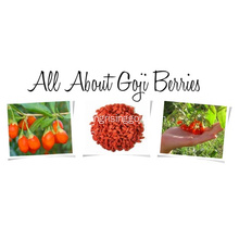 goji berry konvensional 450 wolfberries