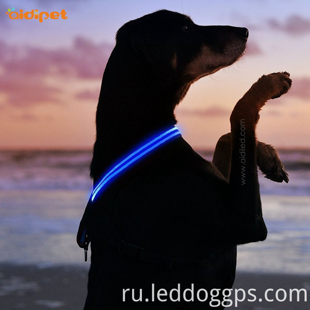Usb Rechargeable Led Dog Harness