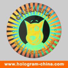 Etiqueta do holograma da segurança da prova de adulteração 3D