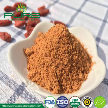 Venda quente de Goji Berry Powder
