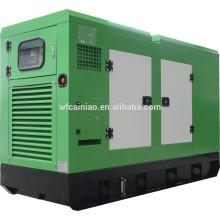 Gerador diesel silencioso de 30kw Ricardo