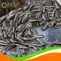 sunflower seeds color sorter
