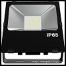 Projecteur imperméable populaire de Bridgelux IP65 100W LED de l'UE