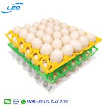 2020 Best seller chicken egg tray plastic egg tray for 30 chicken eggs