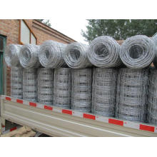 Galvanized Iron Knotted Wire Mesh