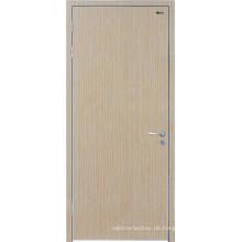 Südflorida-Türen, Südindische Haustür-Entwürfe, spezielle Entwurfs-Glastür, Stailess Stahltür