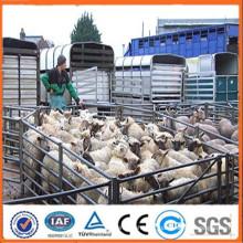 Anping usine a utilisé du bétail de bétail fournisseur de haute qualité