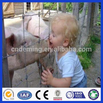 factory direct deer fencing sale( Anping factory )
