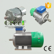 High Quality Permanent Magnet Generator with Low Rpm