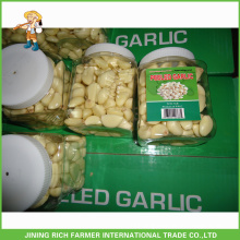 1LB/Bag Jinxiang Fresh Peeled Garlic