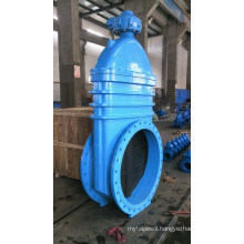Soft Seated Gate Valve