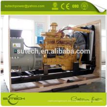 ¡En stock! SC9D310D2 200kw / 250Kva Shangchai Dongfeng grupo electrógeno diesel