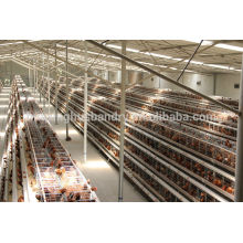 china new design galvanizing best quality cages for chickens outdoor