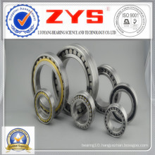 Cylindrical Roller Bearings Nn3064