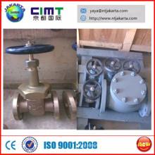 JIS F7372 5k marine valve cast iron swing check valve,