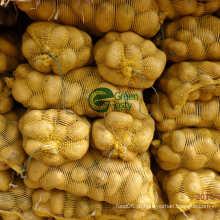 Natureza / batata desidratada orgânica corta