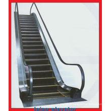 Escalier d'escorte à l'intérieur de l'intérieur avec plaque d'atterrissage en acier inoxydable gravé