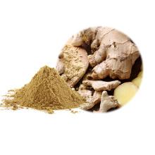 Poudre de gingembre pur biologique naturel