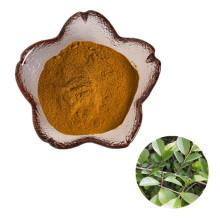 Hot Sale Herbal Plant Extract Slippery Elm Bark Powder / Elm extract powder