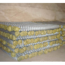Galvanized Chain Wire Mesh in Good Quality