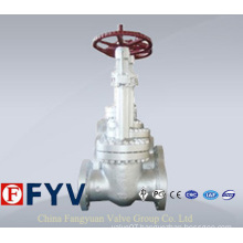 Pn 150-900 Carbon Steel Cryogenic Globe Valve