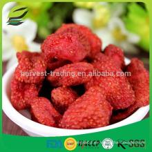 Nueva cosecha china a granel de fresa seca al por mayor