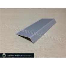 Borda da telha de prata no perfil de alumínio Tamanho pequeno