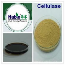 Têxtil Líquido Enzima-Cellulase / Aditivo da indústria de Washzyme / químico / agente
