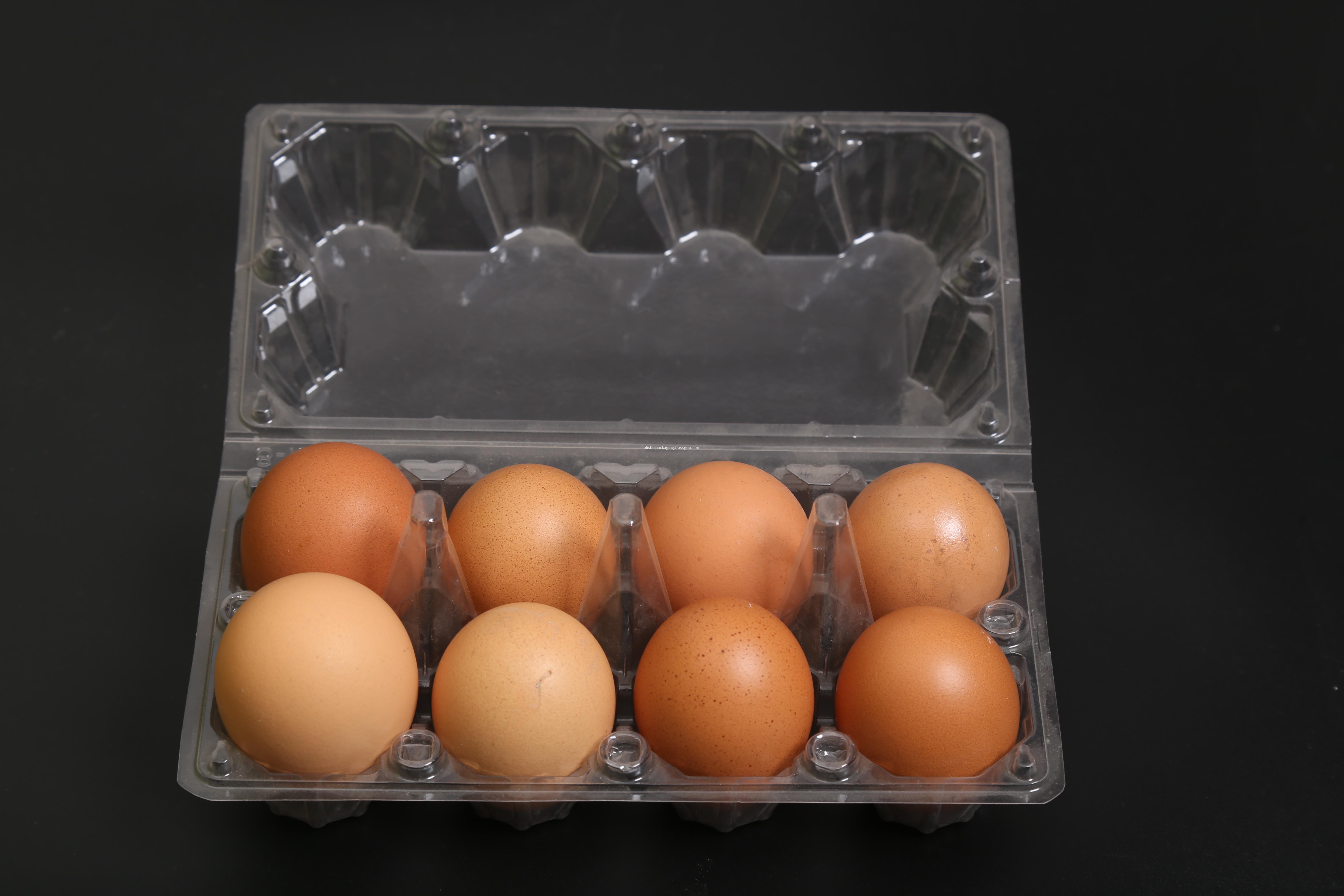 egg cartons trays