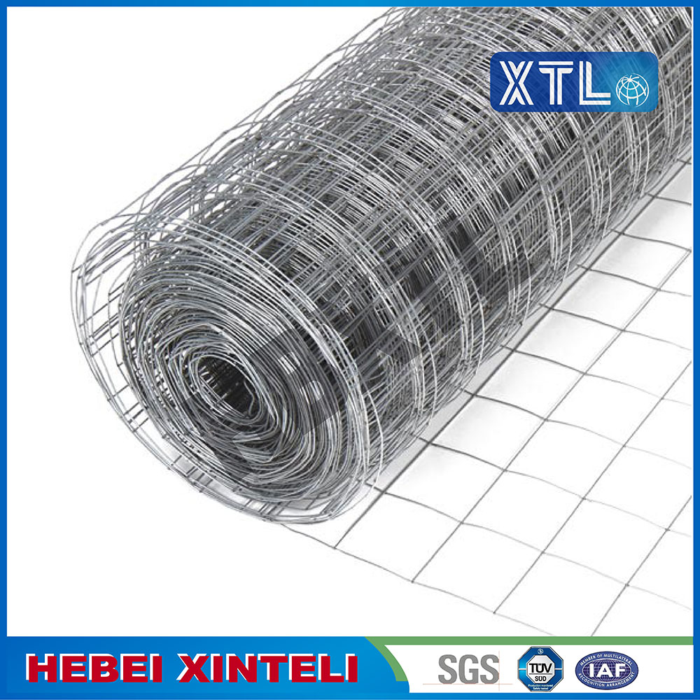 PVC Coated Holland Wire Mesh Fencing