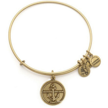 Alex and Ani Bangle/ Charms Bangle/ Fashion Jewelry (XBL13354)