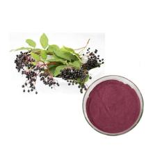 Organic Natural Black Elderberry Kräuterextrakt Holunderpulver Flavone 1%