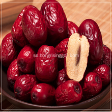 Red Date Chinese Jujube