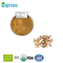 Herbal Extract Dong Quai Extract Ligustilide Angelica Sinensis Extract Powder