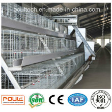 Best Price High Quality Automatic Pullet Chicken Coop Cage