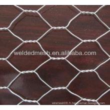 4 '' Hexagonal Wire Mesh