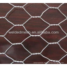 Hexagon Shape Gal Wire Mesh