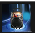 China Factory New Design Dual 12 Inch Bluetooth Multimedia Speaker