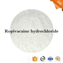 allergische Reaktion Ropivacain und Bupivacain hcl-Pulver