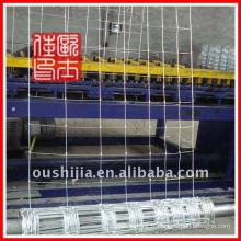 Fermeture en treillis en treillis métallique de haute qualité / clôture en maille d'animal (fabrication)