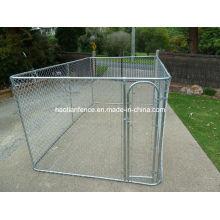 Chain Link Dog Run Cage Melhor casa de cachorro isolada